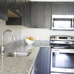 kitchen at Broadleaf Boulevard Apartments
